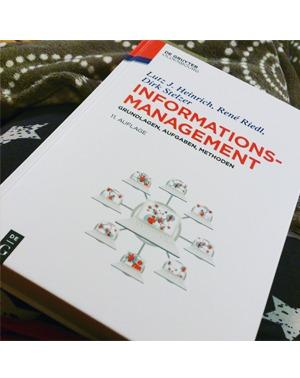 Informationsmanagement - Heinrich, Riedl, Stelzer