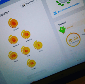 Duolingo Fortschritt