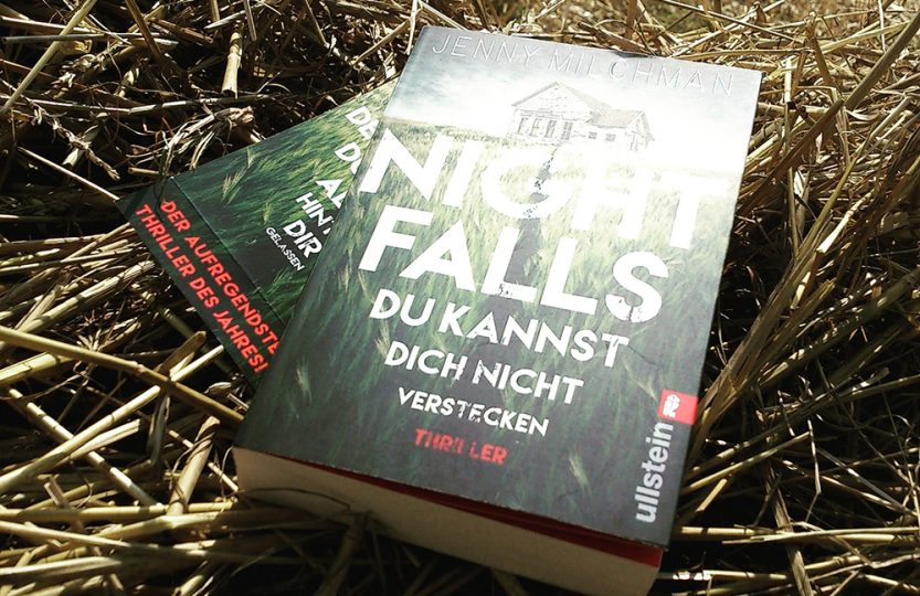 Night falls - Jenny Milchman