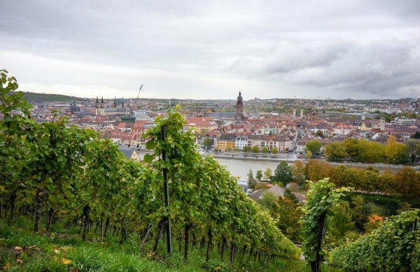 Blick von den Weinbergen auf die Stadt